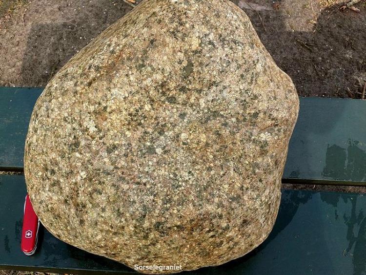 Sorselegraniet - Langs de N34 bij Borger (Dr.) Het oppervlak van de zwerfsteen is licht verweerd, waardoor de porfirische veldspaten goed zichtbaar zijn.